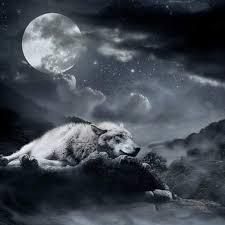 El Lobo Y La Luna Anaisreyess Blog